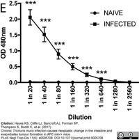 Ig Gamma 2A Chain C Region A Allele Monoclonal Antibodies